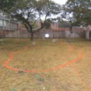 Demarcated backyard ready for digging