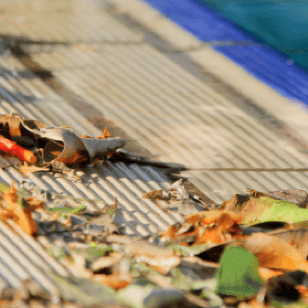 Autumn leaves on pool - how to keep leaves out of pool skimmer
